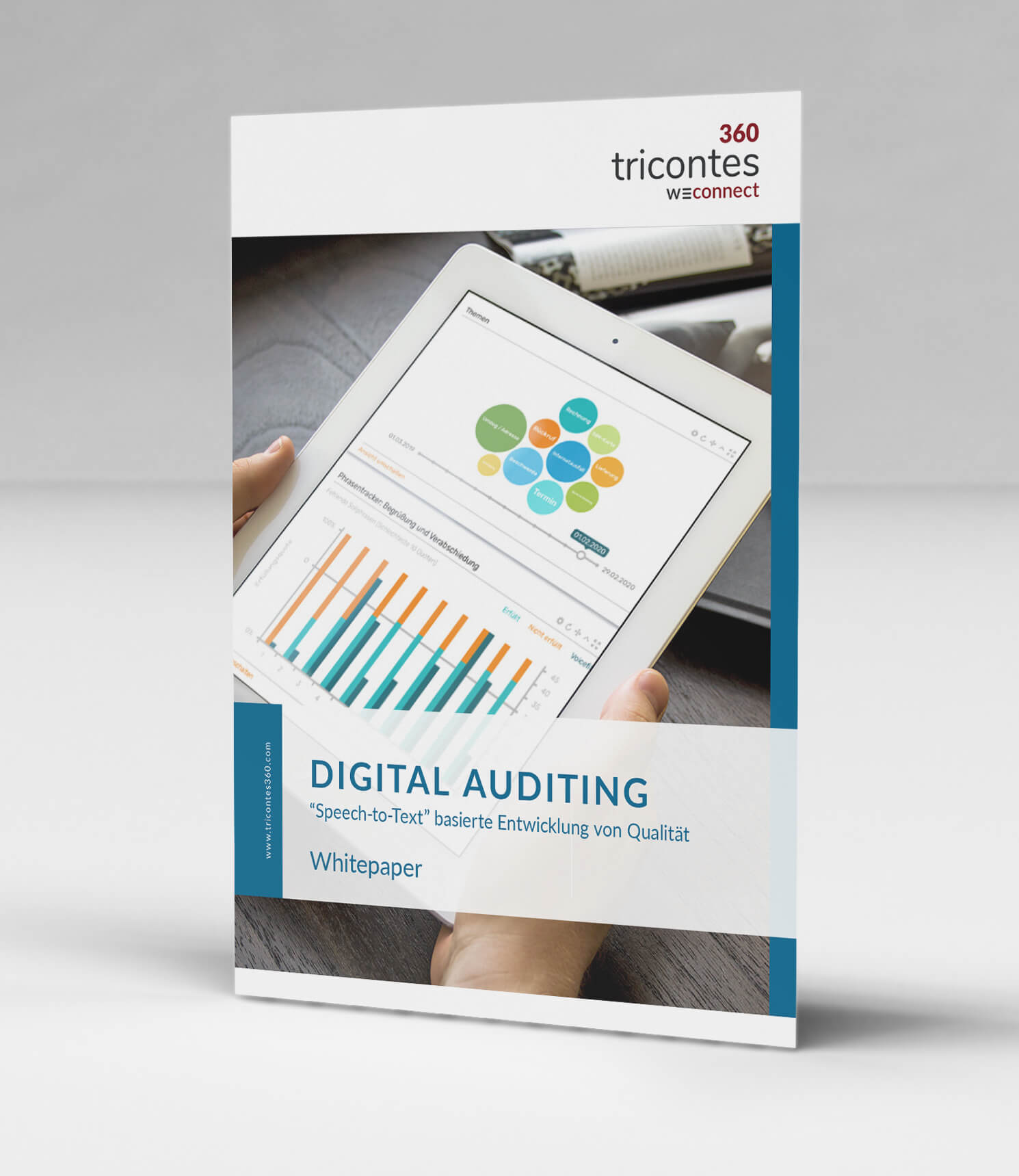 Digital Auditing (DE)
